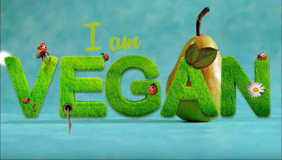 veganstvo (1)